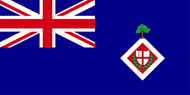 City Livery Yacht Club Ensign