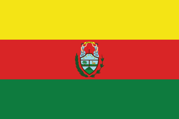 2nd Bolivian State Flag