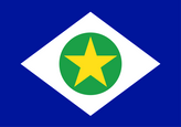 Mato Grosso Flag