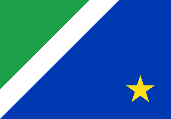Mato Grosso do Sul Flag