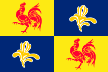 French Community Commission Flag