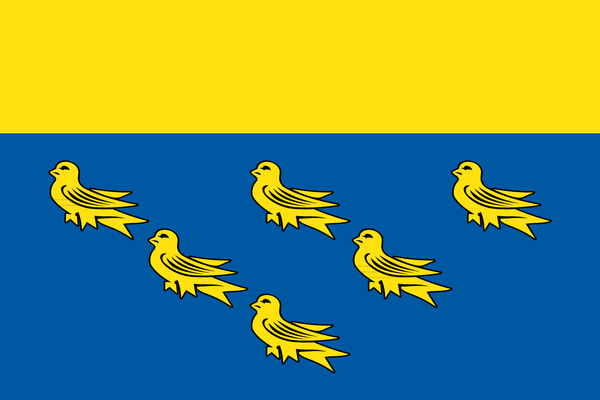 West Sussex Flag