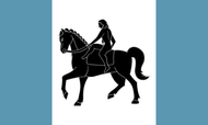 Coventry Flag