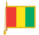 Ceremonial Guyana Flag