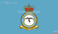 RAF 25 Squadron Badge Flag