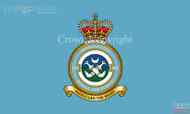 RAF 303 Signals Unit Flag