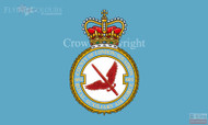 601 (County of London) RAuxAF Squadron Flag