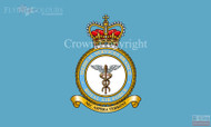 RAF Medical Services Flag