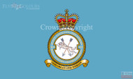 2623 (East Anglian) Squadron Royal Auxiliary Air Force Regiment Flag