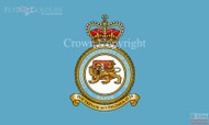 Cambridge Universitiy Air Squadron Flag