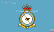 RAF Operations Informations Servive Wing Flag