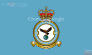 RAF 1310 Flight Flag