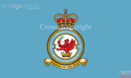 RAF 54 Signals Unit Flag