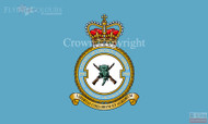 RAF 2503 RAuxAF Regiment Flag