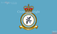 RAF Tactical Communications Wing Flag