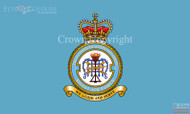 RAF 2 Field Communications Squadron Flag