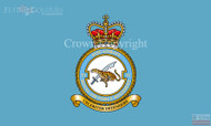 RAF Regiment 51 Squadron Flag