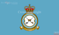 RAF 1 Flying Training School Flag