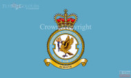 RAF 3 Flying Training School Flag