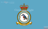RAF 591 Signals Unit Flag