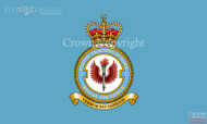 RAF 2 Flying Training School Flag