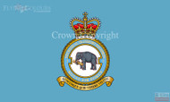 RAF 2 Mechanical Transport Squadron Flag