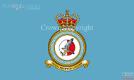 RAF Tactical Imagery Intelligence Wing Flag