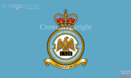 RAF 63 Regiment Squadron Flag