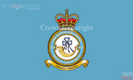 RAF 32 The Royal Squadron Flag