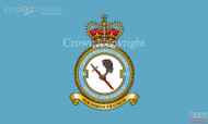 RAF 38 Group Flag