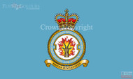 RAF 1 Force Protection Wing Flag