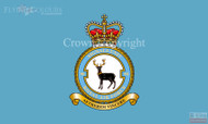 RAF 90 Signals Unit Flag