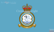 RAF 1564 Flight Flag