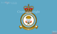 RAF Airborne Delivery Wing Flag