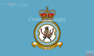 RAF 8 Force Protection Wing Flag
