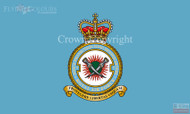 RAF 7 Force Protection Wing Flag