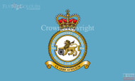 RAF 904 Expeditionary Air Wing Flag