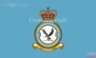 RAF 2 Force Protection Wing HQ Flag