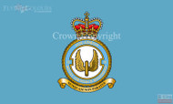 RAF 2 Regiment Squadron Flag