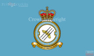 RAF 3 Force Protection Wing Flag