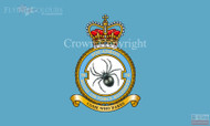 RAF 58 Regiment Squadron Flag