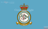 RAF 5 Information Services Squadron Flag