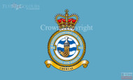 RAF 902 Expedetionary Air Wing Flag