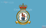 RAF 903 Expeditionary Air Wing Flag