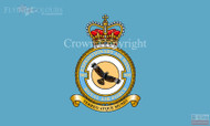 RAF 905 Expeditionary Wing Flag