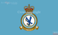 RAF Catering Training Squadron Flag