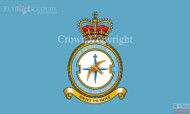RAF 1 Air Mobility Wing Flag