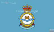 RAF Auxiliary Air Force Flag
