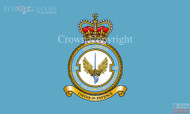 RAF 20 Regiment Squadron Flag