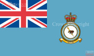 RAF Operations Informations Servive Wing Ensign